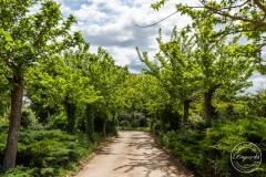 Boda-en-Jardins-Emporda-4