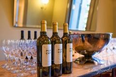 Coctel-cata-vinos-El-Palauet-Catering-Emporda-7