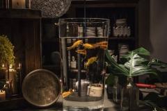 Cumpleaños-en-the-basement-catering-emporda-4
