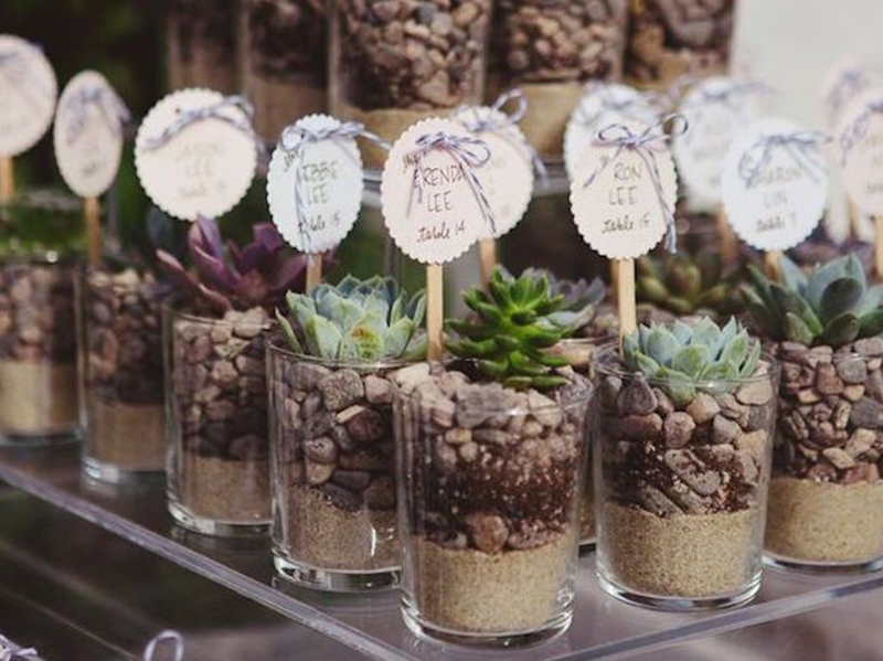 Bodas decoraci n con terrarios catering l 39 empord for Decoracion de pared para matrimonio
