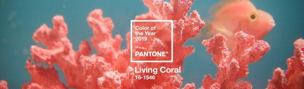 Living Coral: el color del año 2019 según Pantone 1